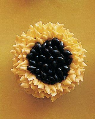 Mla104524_0209_sunflower_xl