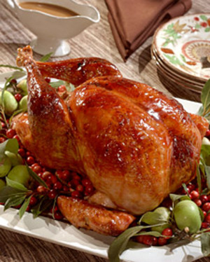 Turkey_cranberry
